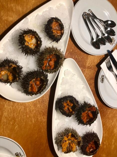 Ooo, sea urchin <3